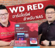 WD RED NAS Harddisk Review